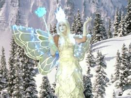 fairy_stilt